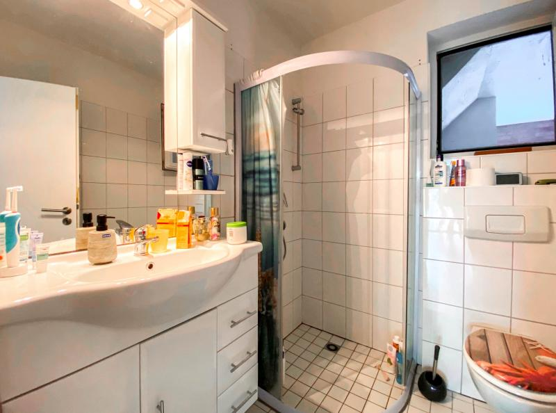 Innenansichten: Duschbad Wohnung
